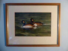 "Original watercolour ""Grebes"" By Norman Black"