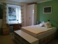 Gorgeous large double room in Clifton garden flat