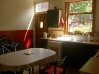 Room in spacious, well furnished, 4- bed houseshare