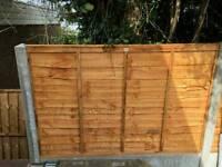Garden and Fences