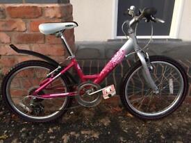 Girl's Bike, Raleigh, 20 inch