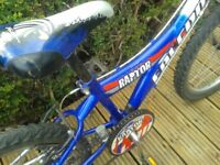 Childrens 6Spd FALCON Raptor Mtn Bike, 20In Wheels, Great condition, all in order