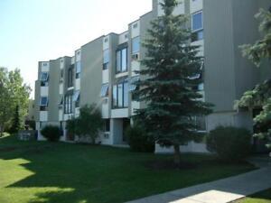 Windsor Estates - Bachelor Apartment for Rent