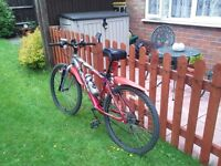 Adult Mountain Bike Crosstrax CT200 Good condition 2 New Tyres