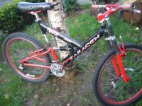 Team SARACEN downhill bike.