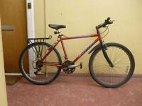 Carrera Mountain bike for sale