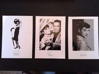 Audrey Hepburn Set of 5 RARE movie Photo Postcards BRAND NEW
