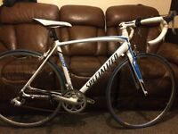 Specialized allez sport 2016 road racing bike