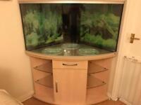 RENA Corner Aquarium 350L