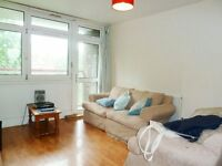 Spacious 2 Bed Flat Ideal For Sharers Close To Battersea Bridge And Chelsea, Furnished Available Now