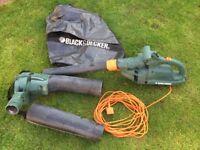 Leaf Blower & Vacuum