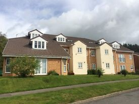 Fantastic 1 Bedroomed Apartment To Rent In Ushaw Moor