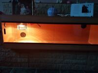 Snake Vivarium 5ft long with light and temperture sensor in very good condition £50ono.