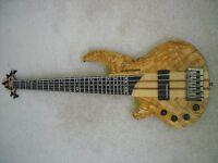 Lefthanded Hudson 5 string bass