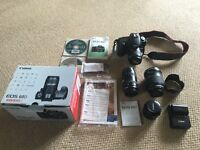 Canon 60D (rarely used) + 4 lenses + great camera bag + original box and packaging