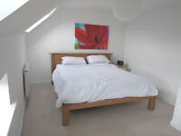 Room available in tidy, professional house in Bishopston