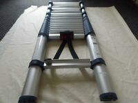 XTEND + CLIMB TELESCOPIC LADDER
