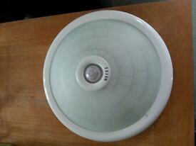 Light with motion sensor detector
