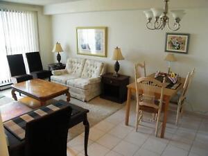 June 1  2016 - Executive Furnished Rentals - NO Lease