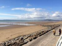 Modern Holiday House Level 2 minute walk on to dog friendly beach! Wales book a week in June now!