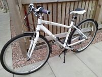 LADIES PENDELTON DARBY BICYCLE. Only used a few times, excellent condition.