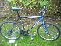 Mans Jupiter bike.