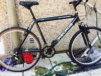 Large bike for men in excellent condition with new tyre