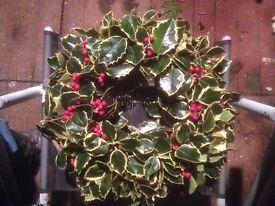 Christmas wreaths ... .. 12 inch