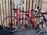 Specialized Allez Elite XL road bike