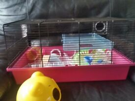 Hamster, mouse cage.