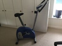 York Inspiration 100 exercise bike