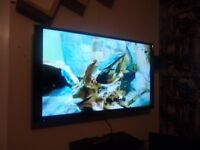 "40"" Full HD Ready TV Free View built in"