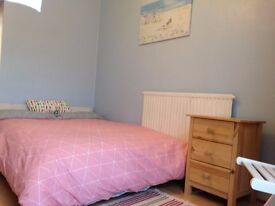 Lovely bright room in shared house
