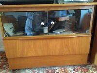 TV, CD/DVD/RECORD PLAYER OR MEDIA UNIT, STORAGE, CABINET