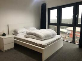 Double room with en-suite to rent