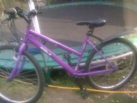 british eagle purple mountain bike