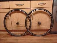 700c Fuji singlespeed/Fixie wheels for sale