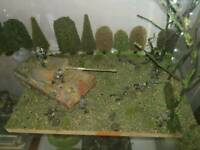 Finished Dioramas For Sale