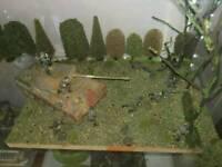 Dioramas - Gumtree