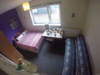 ^^Live in the Gloden Triangle!!Dbl Room in Bow!