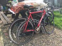 Viking racer cheap bike