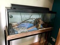 Fish tank or vivarium