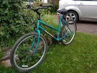 Apollo Fever ladies mountain bike