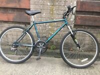 Vintage Raleigh Mountain Bike FREE DELIVERY Hardtail Cycling Riding Exercise Travel Student Retro