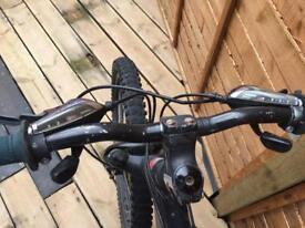 Sarecen mountain jump bike