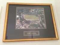 sports memorabilia - cricket - the oval cricket ground - professionally framed picture - IDEAL GIFT