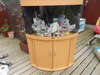 190 litre corner trigon fishtank and stand for sale