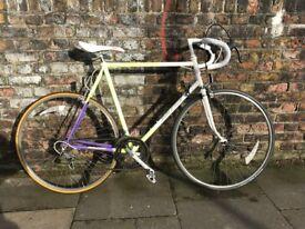 Raleigh Scorpio Twelve Vintage Road Bike