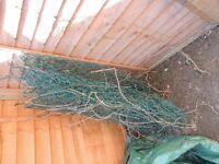 Free plastic covered metal garen wire - 2 metres wide