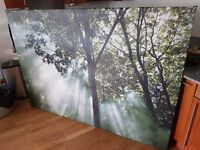 Large Ikea Canvas Art